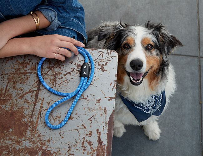 This Might Be the Most Badass Dog Leash Ever Made