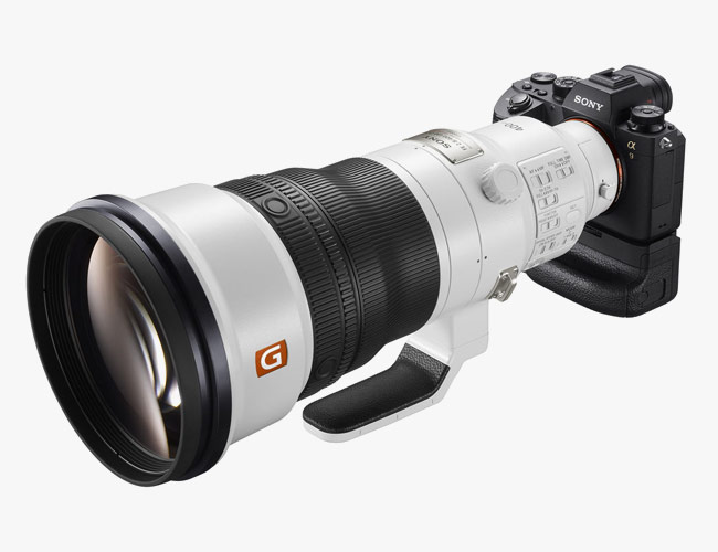 Sony's Super-Telephoto Lens Is the Ultimate Weapon for Wildlife Photographers