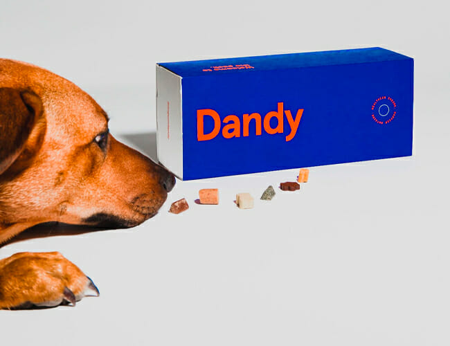 This Startup Uses Machine Learning to Make the Perfect Dog Treats for Your Pet